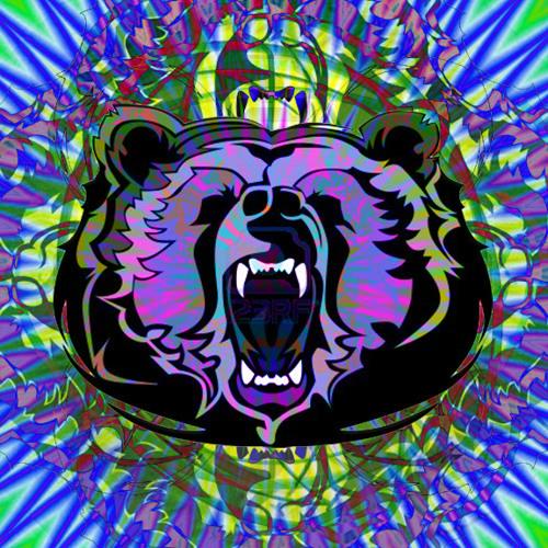 Electro Bears's avatar
