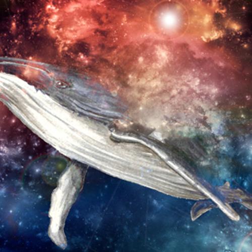 Aspiring Space Whale's avatar