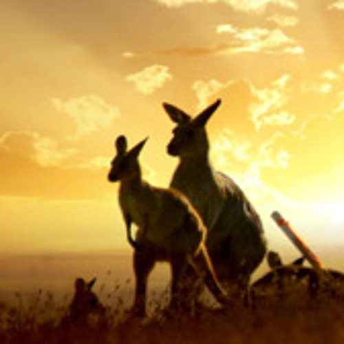 Sleeping Kangaroos Music's avatar
