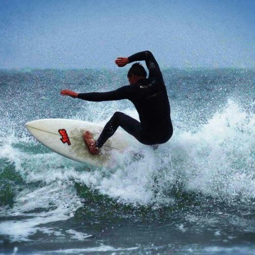 surf music life's avatar