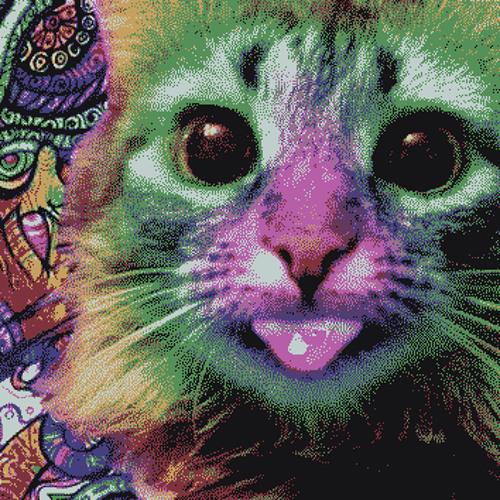 PsyCat's avatar