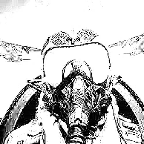 Survival Pilot's avatar