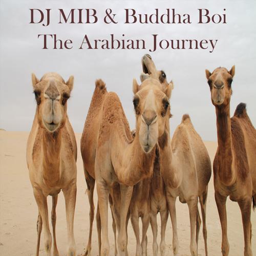DJ MIB AKA M.I.B's avatar