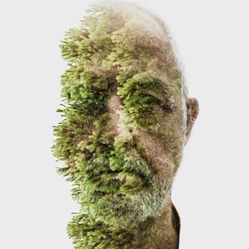 Rain Zamora's avatar