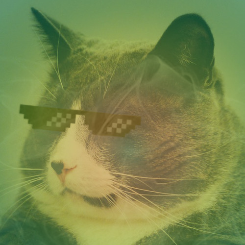 white noise channel's avatar