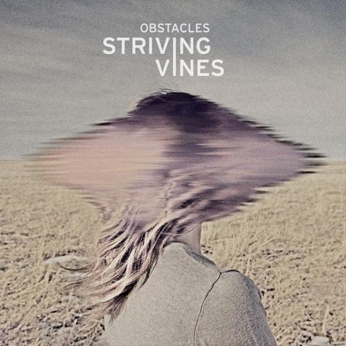 Striving-Vines's avatar