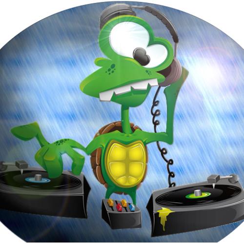 GR33N TURTLES's avatar