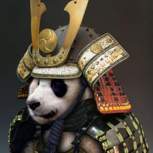 dan gmanual's avatar