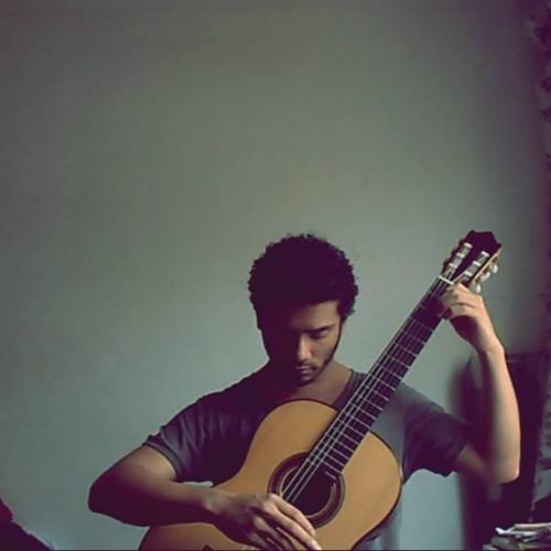 Henrique Carneiro's avatar