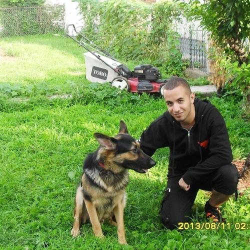Mohamed Hussien 11's avatar