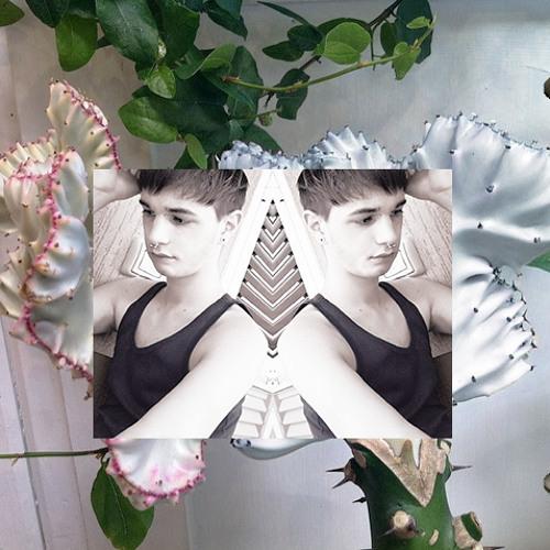 Loris Deity's avatar