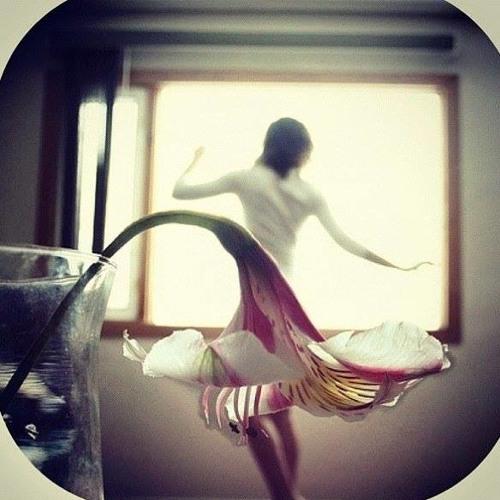 Thanh Pham 23's avatar