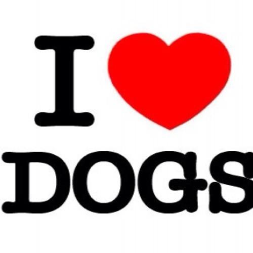 I AM A DOG LOVER 's avatar