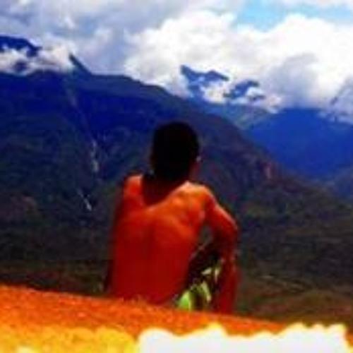 Cristian L Bayona's avatar