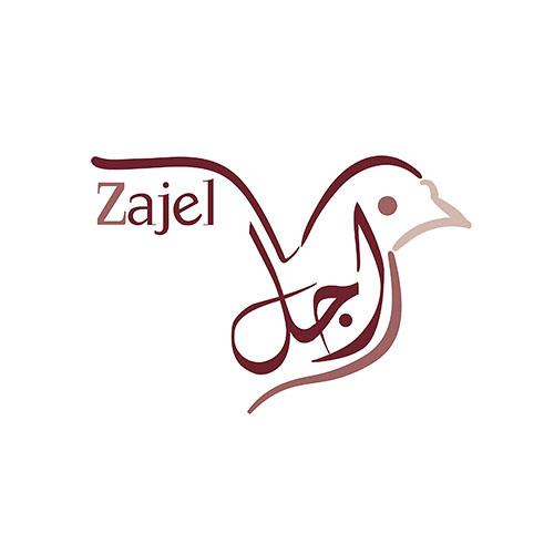 Zajel ZU's avatar