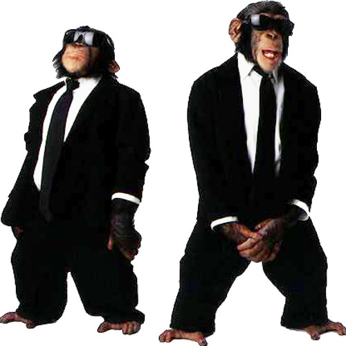 ApesInSuits's avatar