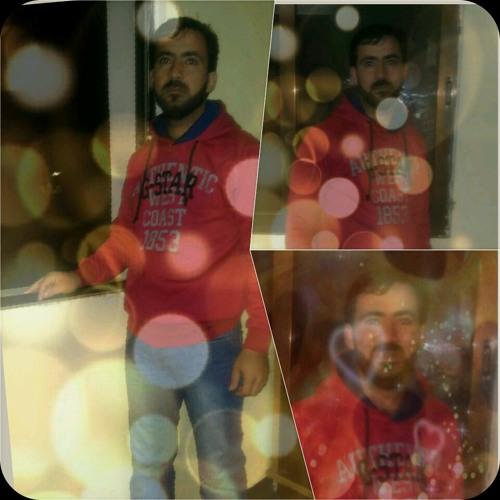 user52255304's avatar