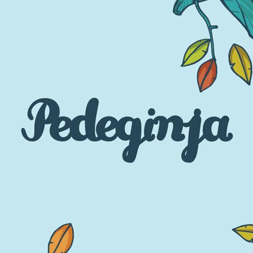 pedeginja's avatar