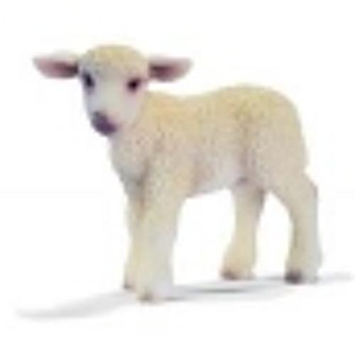 Neil C3's avatar