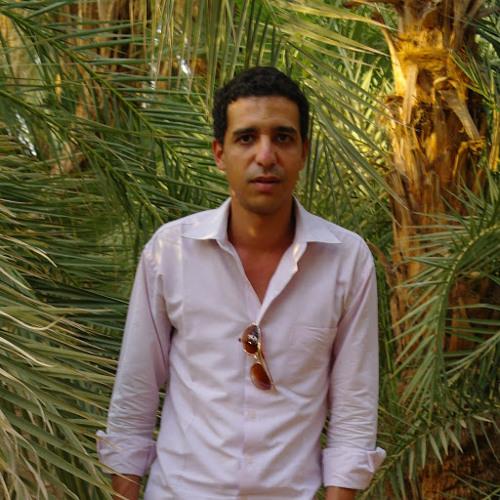 Mohammad Salah Elgazzar's avatar