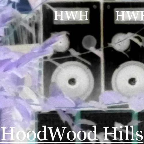 HoodWoodHills's avatar