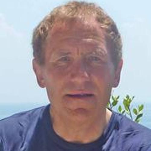 Pieter Dubbelman's avatar