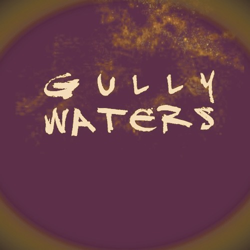 Gully Waters's avatar