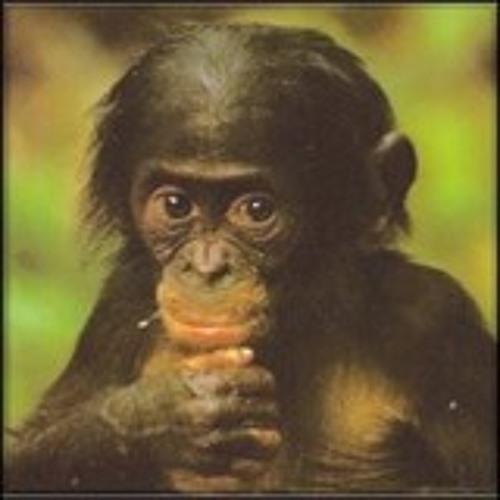 MrOakRoom's avatar
