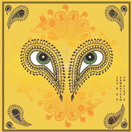 Secret Armadillo Society's avatar