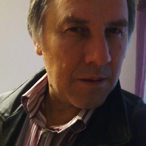 ismet-alibegovi's avatar