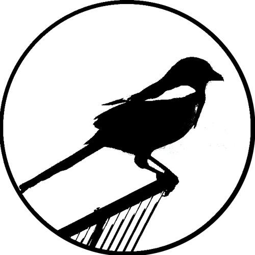 dailoo1's avatar
