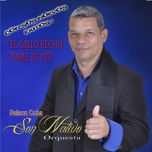 Nelson Coba's avatar