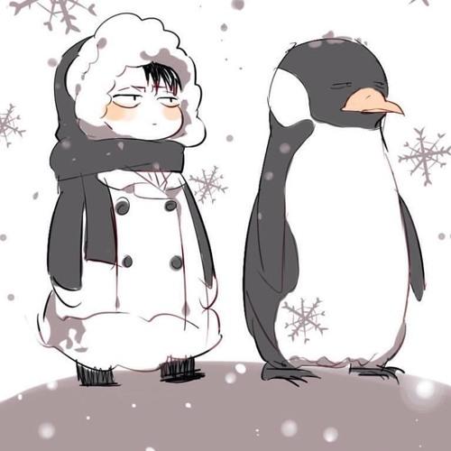 {I'm Penguin(*'───'*)}'s avatar