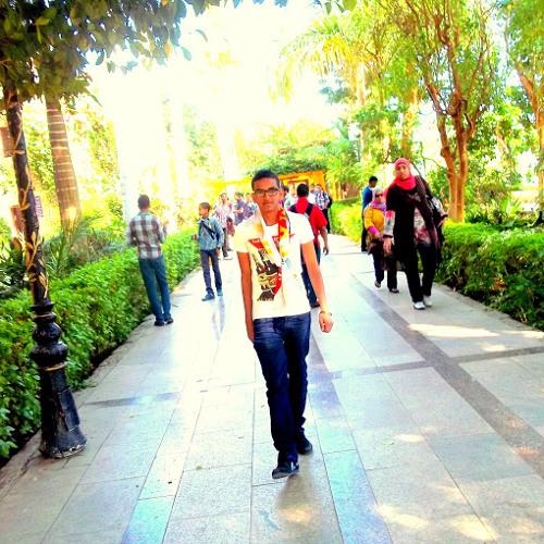 Momen Aboubakr's avatar