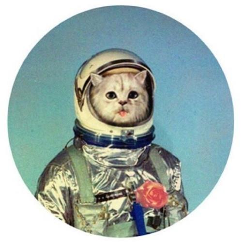 p_mane's avatar