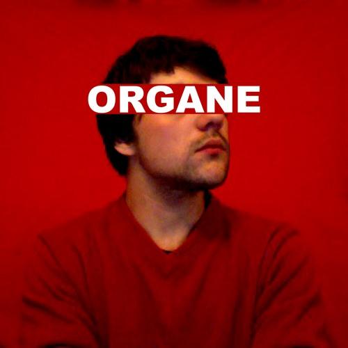 organe3's avatar