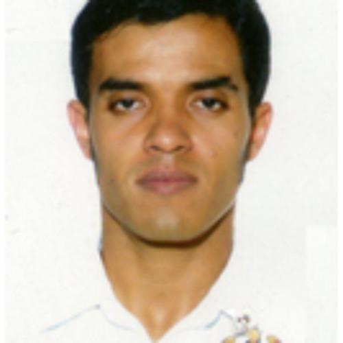 Luis Pollack's avatar