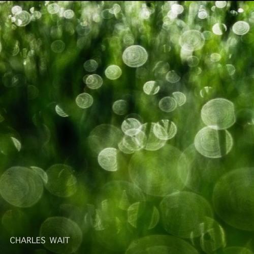 Charles Wait's avatar