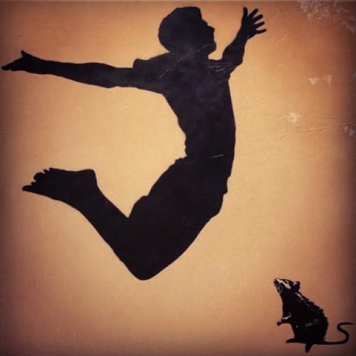 The Wolf of Wine Street's avatar