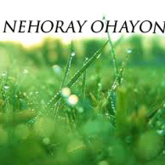 Nehoray Ohayon - Official