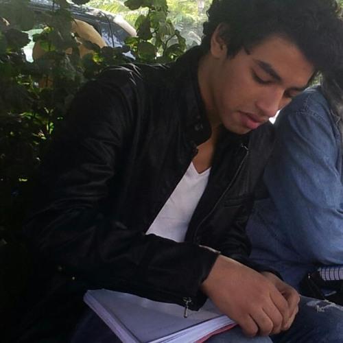 Muhammad Abdel-NaSser's avatar