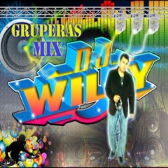 WILLY MIX LG .TX