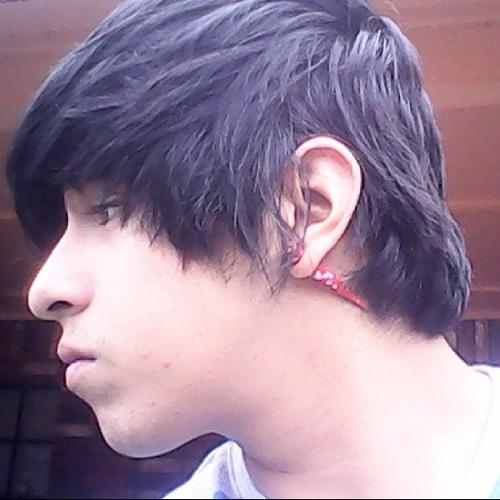 plurvibes!!'s avatar