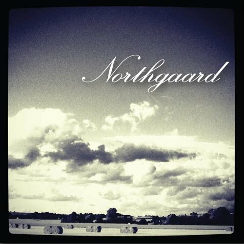 Northgaard's avatar