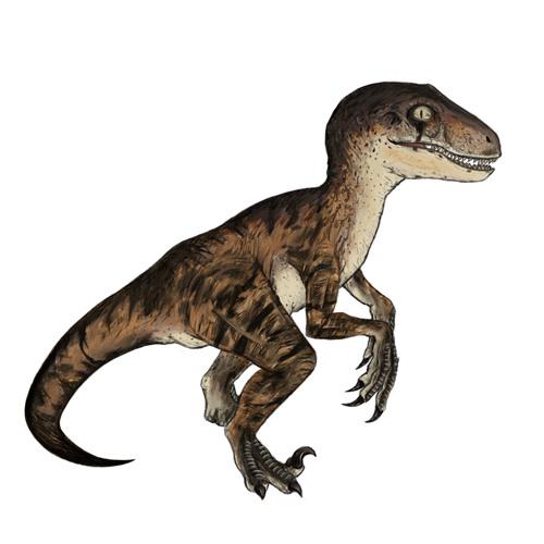 paulojule's avatar