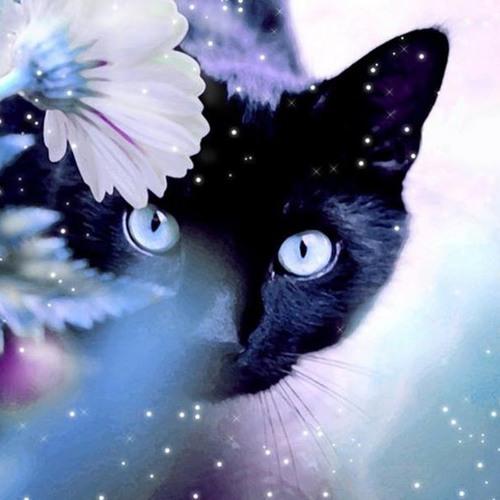 violet9's avatar