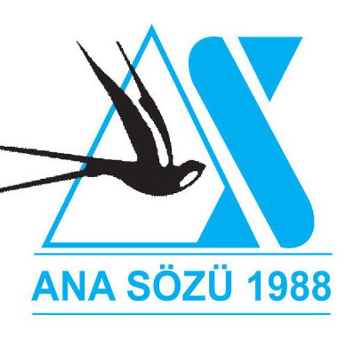 AnaSozu.com's avatar