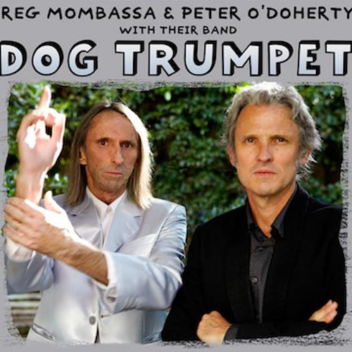 Dog Trumpet's avatar