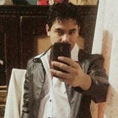 Luis Fernando Silva 19's avatar