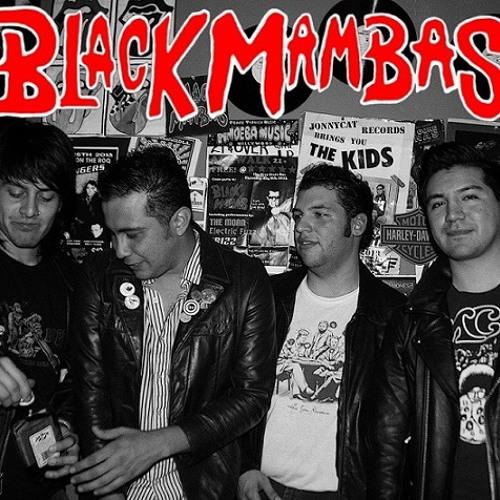 Black Mambas's avatar